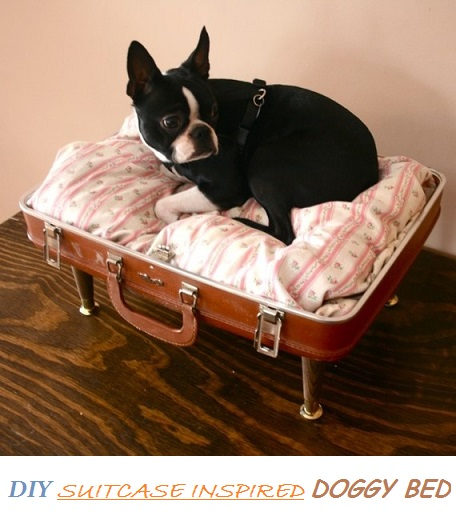 diy doggy bed