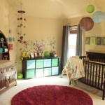 Adorable Owl Baby Boy Nursery
