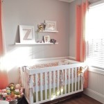 Baby Girl Room Nursery Idea – Coral and Grey