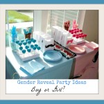 Baby Shower Ideas – Gender Reveal